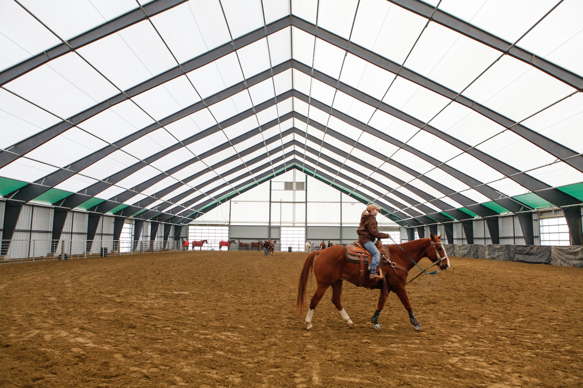 fabric equestrian arena with horse